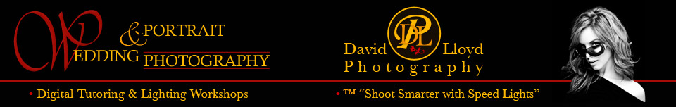 David Lloyd Photography logo